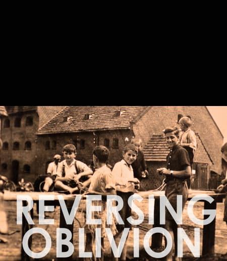 Reversing Oblivion poster
